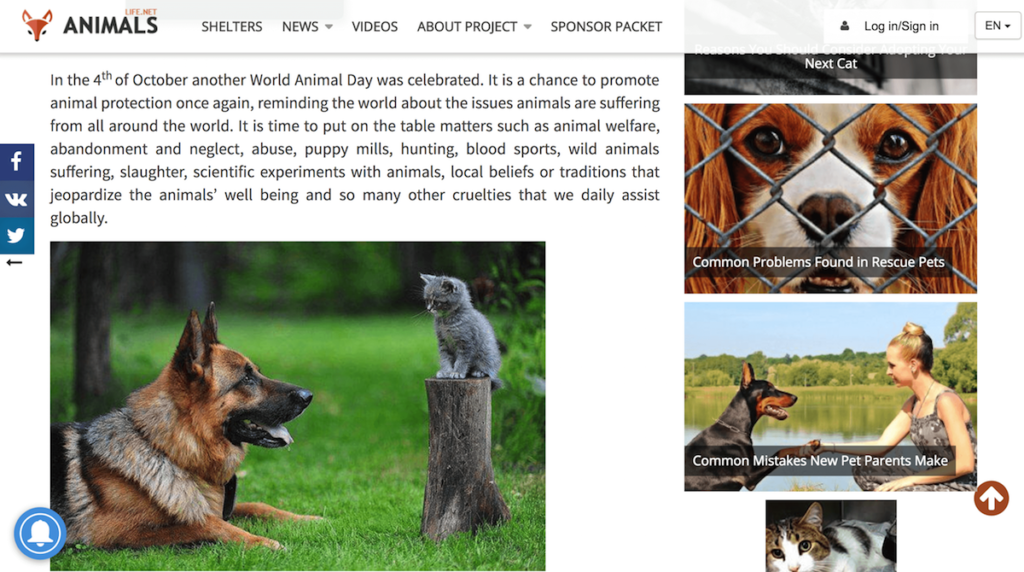 Screen Shot 2018 04 19 at 5.24.35 PM 1024x572 - How to Celebrate World Animal Day Every Day